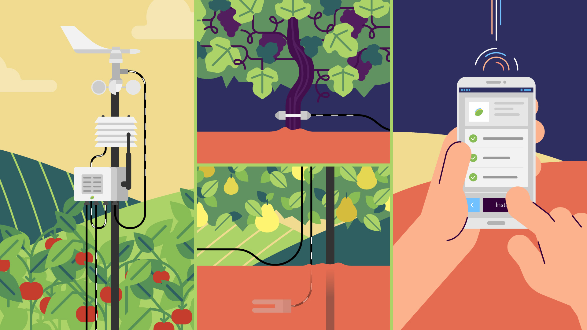 Illustration of a split screen with a crop monitoring device, different plants and a phone