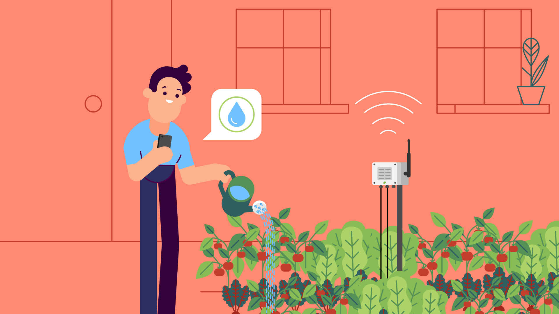 Illustration of a person watering some plants in his backyard